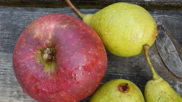 1 Apfel 3 Birnen