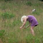 Kind beim Versuch Schmetterlinge zu fangen