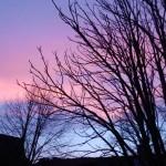 Farbenspiel am Abendhimmel