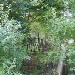Kleines Tor aus Grünholz in der Hecke